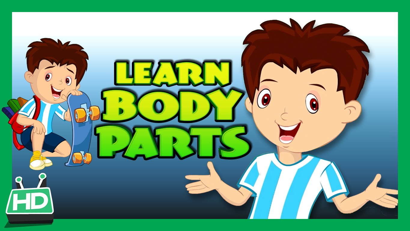 Body Parts For Kids Learning Human Body Parts For Kids Kids Hut