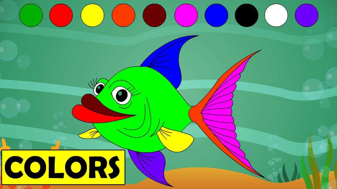 Learn colors with cartoon fish kids educational videos for Fish for toddlers