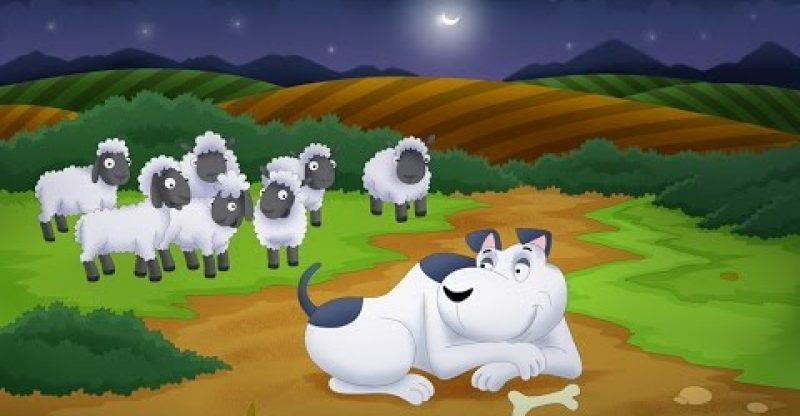 The Sheep and the Dog | Bedtime Stories | Fable | Stories for Kids