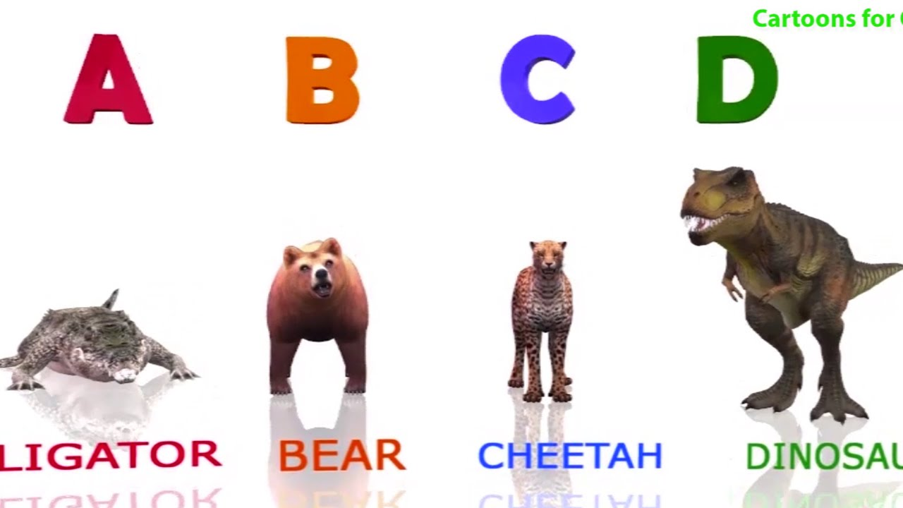 Image of: Chart 3d Animals Alphabets Az Song Learning Abc Songs With Animal Names Kids Learning Videos Place Kids 3d Animals Alphabets Az Song Learning Abc Songs With Animal Names