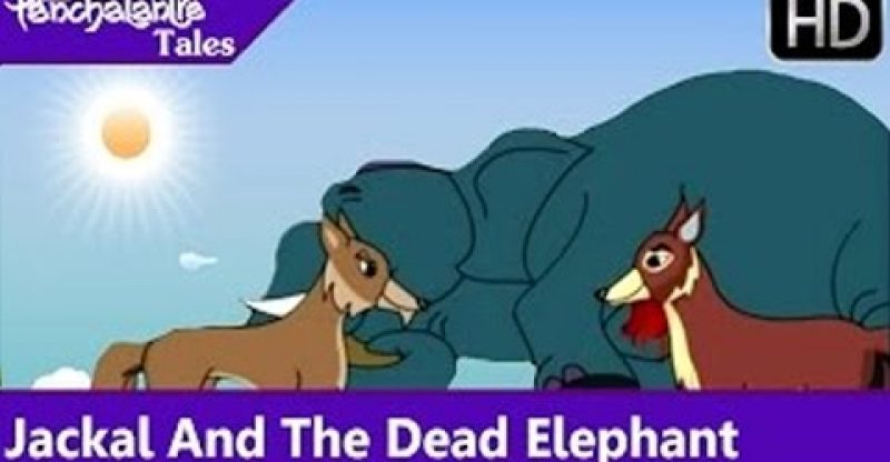 Panchatantra Tales | Jackal And The Dead Elephant | English Animated